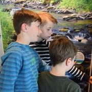 Reger Besucherandrang in der interaktiven Wanderausstellung der Aktion