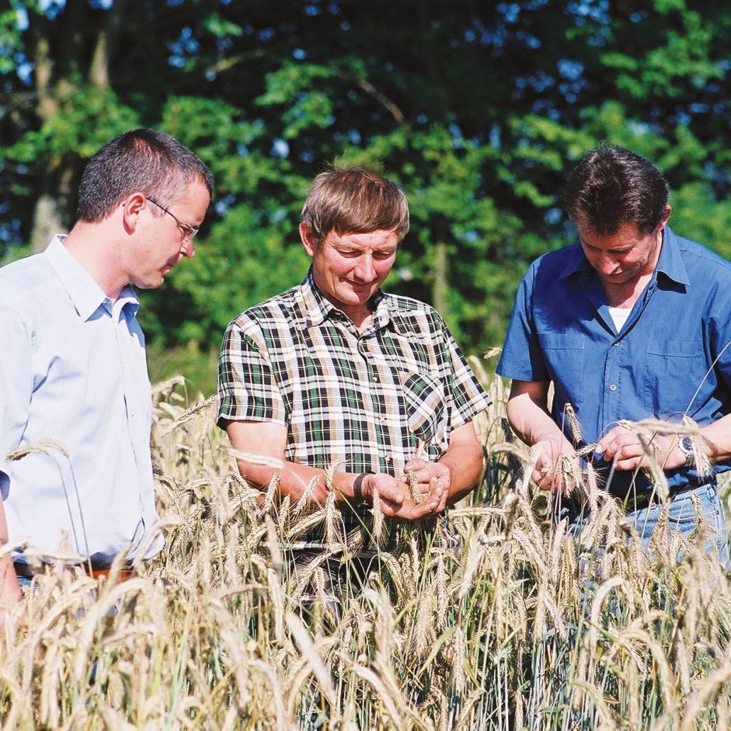 Beratung zum grundwasserverträglichen Anbau auf dem Feld