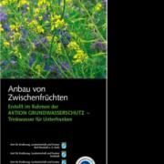 Titel Faltblatt Zwischenfruchtanbau