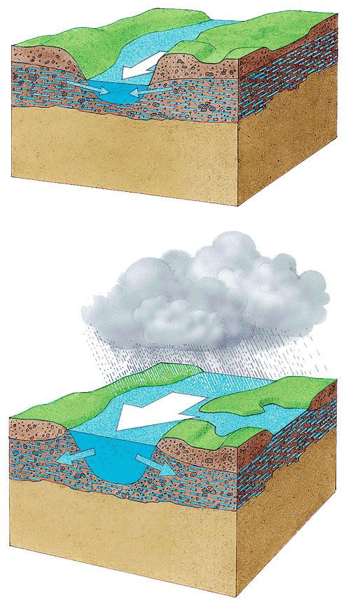 Grafik, die visualisiert, wie das Grundwasser bei Niedrigwasser in einen Fluss strömt und bei Hochwasser in den Grundwasserleiter drückt