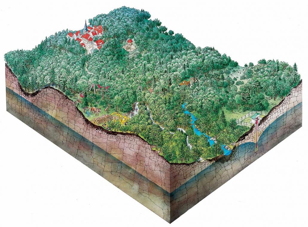Illustration Forstwirtschaft und Grundwasser in Unterfranken
