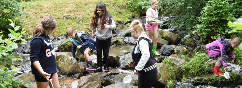Kinder bei der Gewässeruntersuchung im Bach