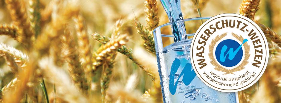 Wasserschutzweizen-Logo auf Wasserglas vor Weizenfeld