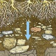 Auf seinem Weg durch die Humus- und Erdschichten wird das Niederschlagswasser gereinigt und so zu wertvollem Grundwasser.