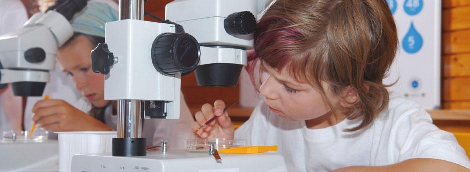 Kinder bei der Arbeit mit Mikroskopen