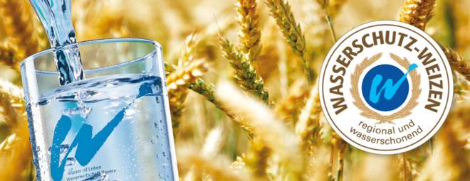 Wasserschutz-Weizen – Grundwasserschutz zum Genießen!
